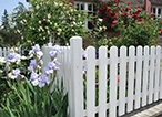 Summer Fence Refresh