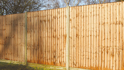 Buy Closeboard Fencing