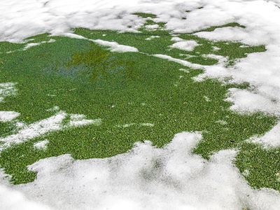 How to care for your artificial grass in winter
