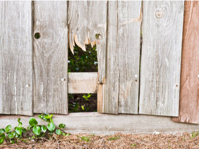 Signs that it is time to install a new Wooden Fence