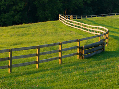 Your guide to Specialist Fencing