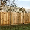 Closeboard fence panel with lattice trellis