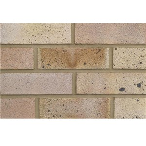 LBC Dapple Light Multi Fletton Bricks are a fine textured brick faced on two headers and one stretcher, ideal for use on both commercial and domestic projects.